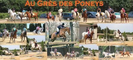 au-gr7s-des-poneys.jpg